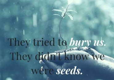 Seeds will grow even in the most unforgiving landscapes…