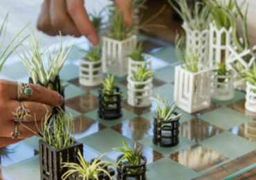 This Air Plant Living Chess Board Made With A 3D Printer Is A Piece Of Living Art For Your Home