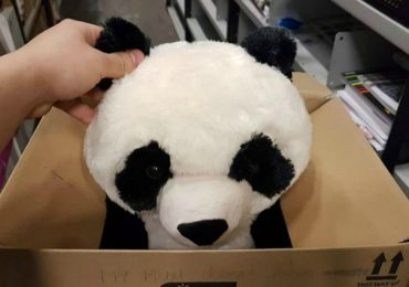 Mom Couldn't Afford Buying A Stuffed Panda For Her Son And Boy Leaves A Heartbreaking Note On The Toy