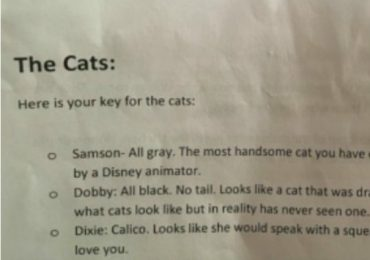 Cat Mom Leaves The Funniest Detailed Description Of Her Cats To Pet Sitter
